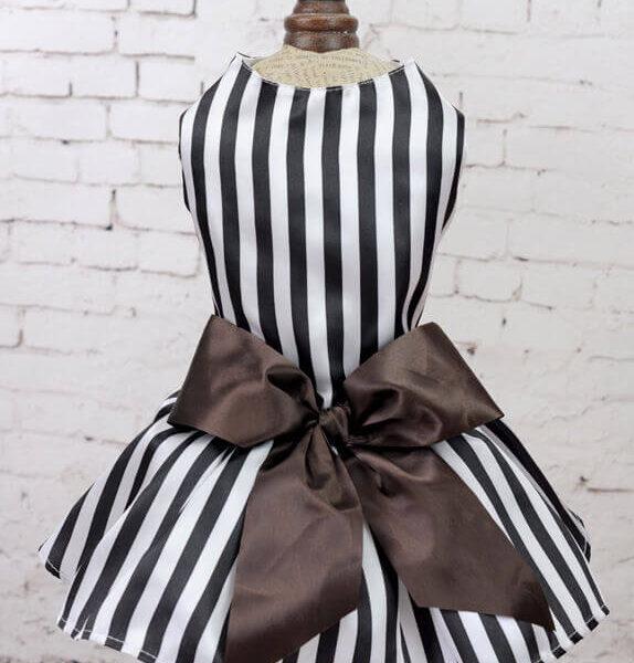 Elegancka sukienka w czarno-białe paski dla suczki z brązową kokardą