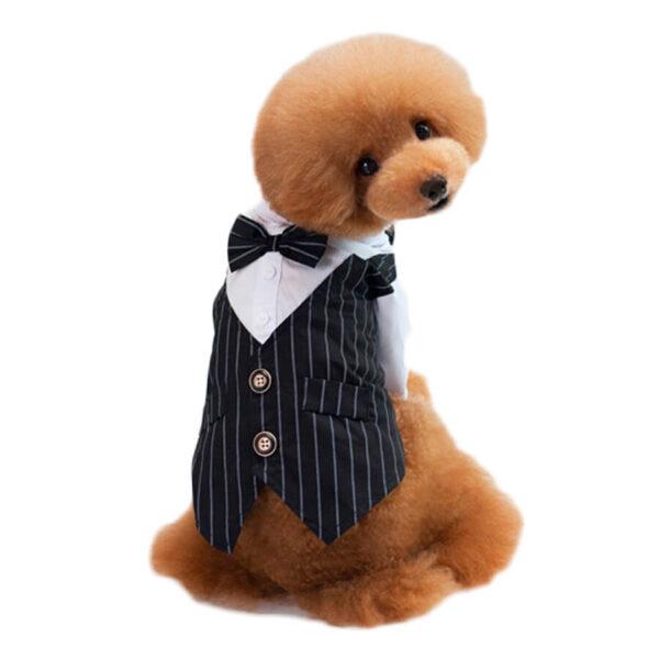 Zizzo Czarny garnitur w paski z muszką dla psa kota