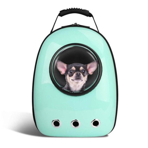 Plecak transporter dla psa kota idealny w podróży kolor miętowy