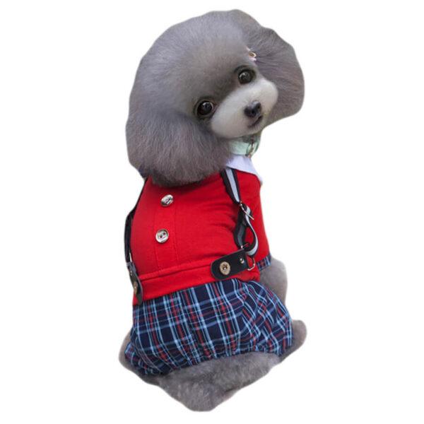 Zestaw dla psa Scotchie z spodenkami w kratkę szelkami w paski i czerwonym sweterkiem i guzikami