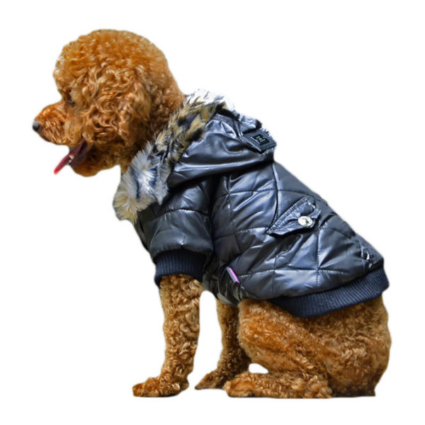 Ocieplana kurtka dla psa CLASSIC czarna piesek