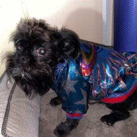 Kurtka dla psa FUTURISTIC GALAXY photo review