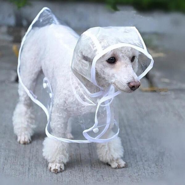 płaszczyk przeciwdeszczowy dla psa