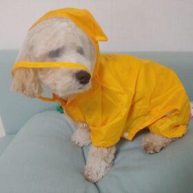 Przeciwdeszczowy kombinezon dla psa WILD ANIMALS photo review