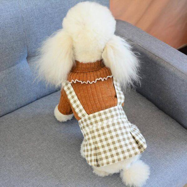 Sweterek sukienka dla psa Sophie piesek tyłem