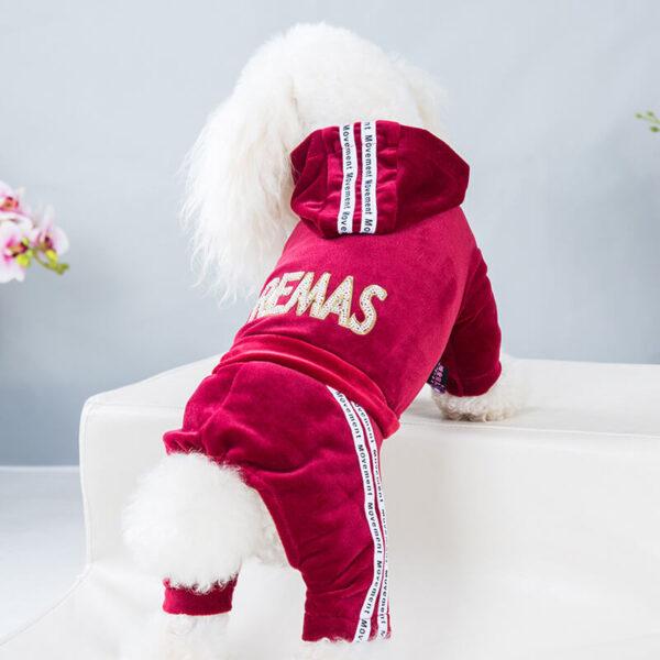Welurowy dres dla psa Velvet czerwony pies tył