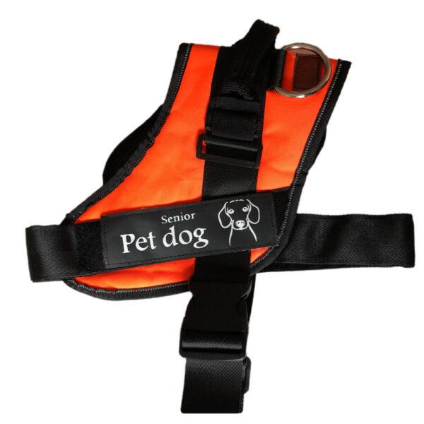 Szelki dla psa Senior Dog Pomarańczowe